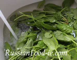 How to wash French sorrel before cooking