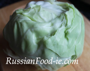 Young summer white cabbage, great for Russian slaw recipe