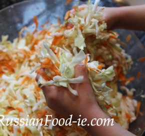 Salting / pickling cabbage for Russian sauerkraut