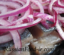 Russian salted herrings. Pickling herrings. Brined, marinated herrings. Recipe, Russian starter