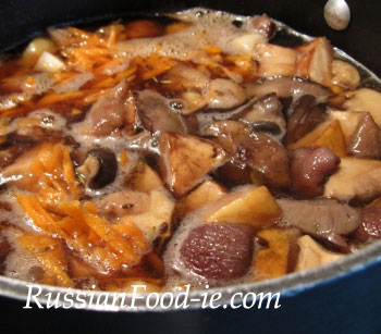 Wild mushroom soup with boletes (ceps, porcini) and potatoes. Russian cuisine